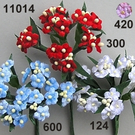 Velvet-forget-me-not x4