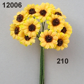 Sunflower mini mini