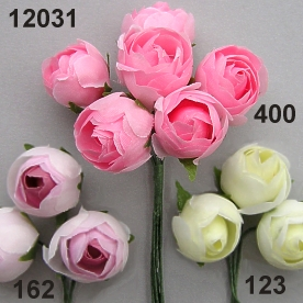 Ranunculus medium