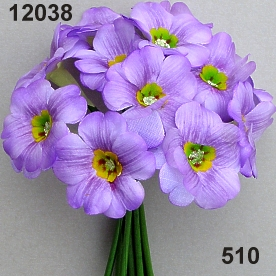 Silk-primula big